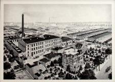 Lubin : Dolnośląska Fabryka Instrumentów Lutniczych